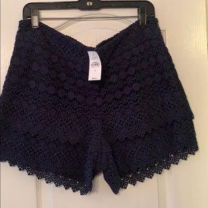 NWT Loft navy lace shorts